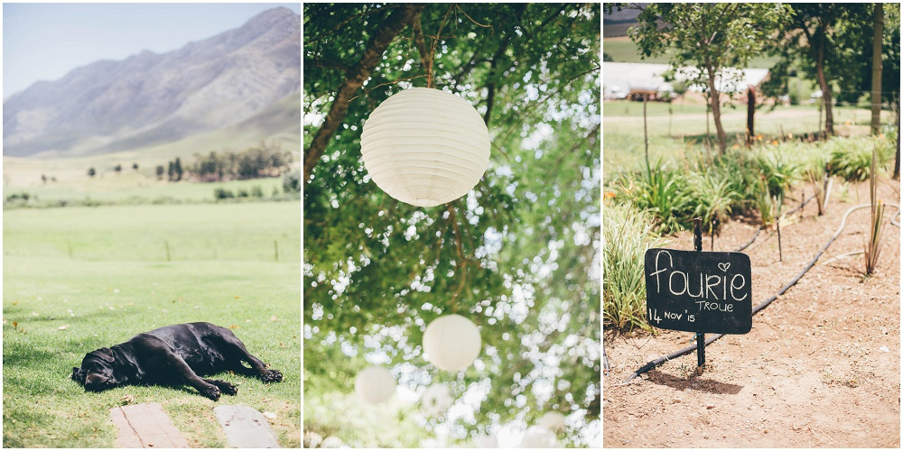 Ronel Kruger Cape Town Wedding and Lifestyle Photographer_2725.jpg