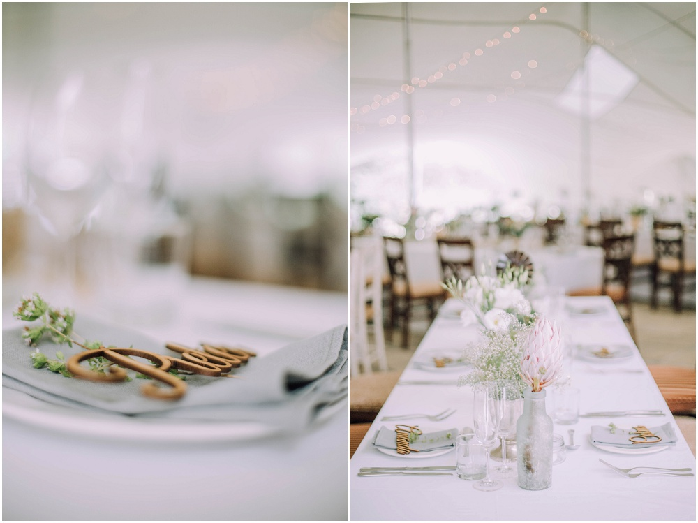 Ronel Kruger Cape Town Wedding and Lifestyle Photographer_5364.jpg