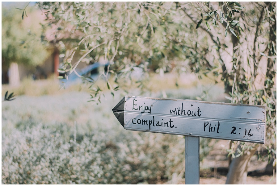 Ronel Kruger Cape Town Wedding and Lifestyle Photographer_2354.jpg
