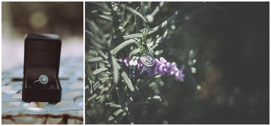 Ronel Kruger Cape Town Wedding and Lifestyle Photographer_2357.jpg