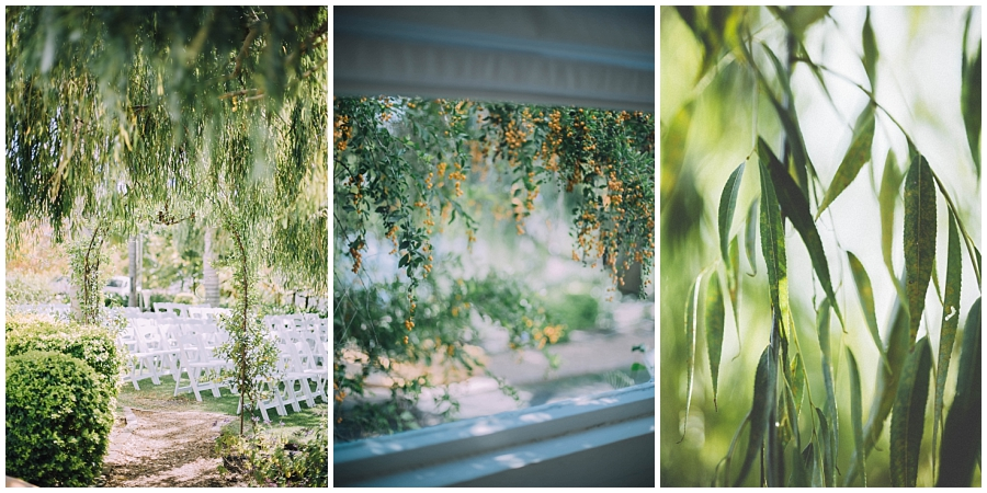 Ronel Kruger Cape Town Wedding and Lifestyle Photographer_2362.jpg