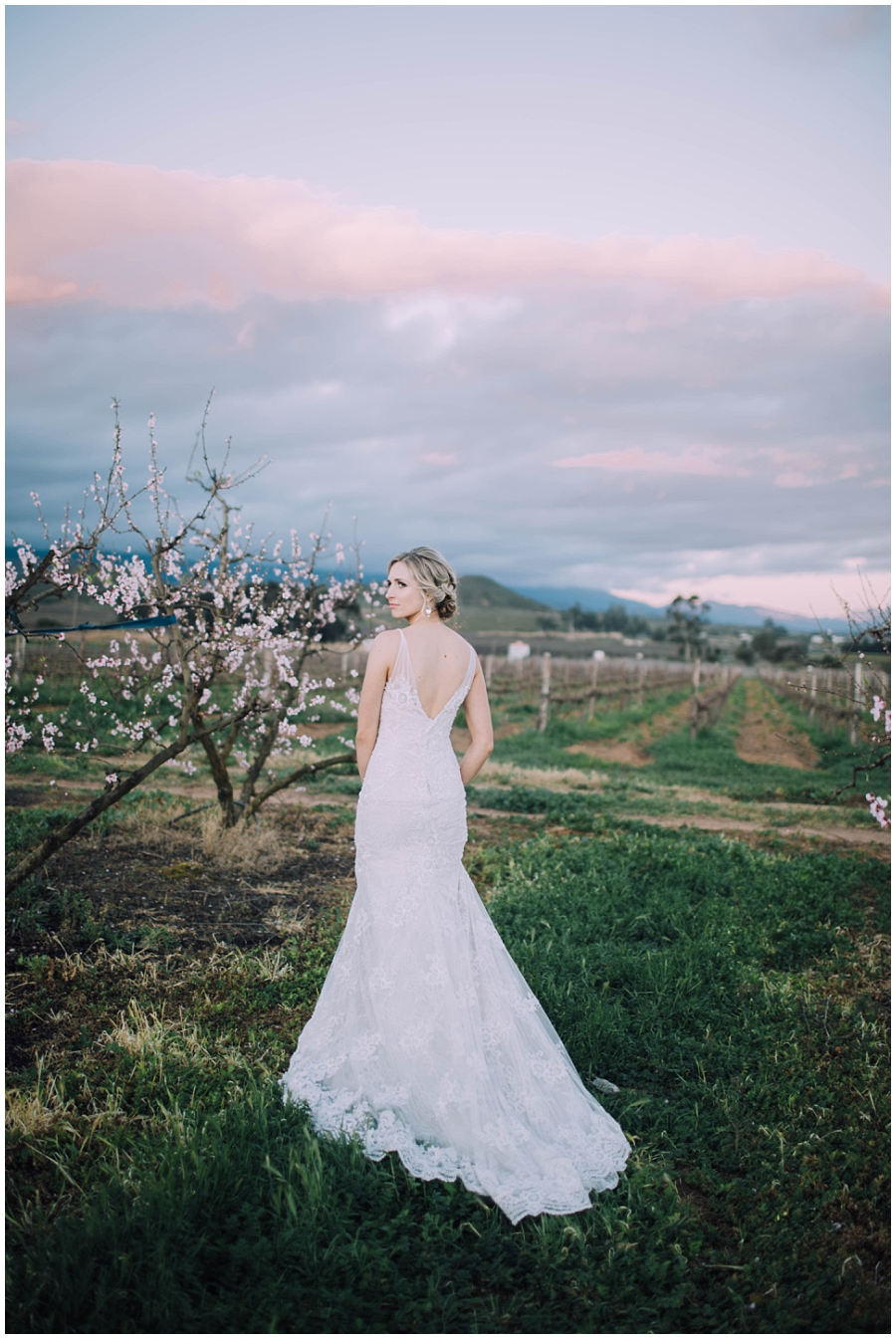 Ronel Kruger Cape Town Wedding and Lifestyle Photographer_6078.jpg