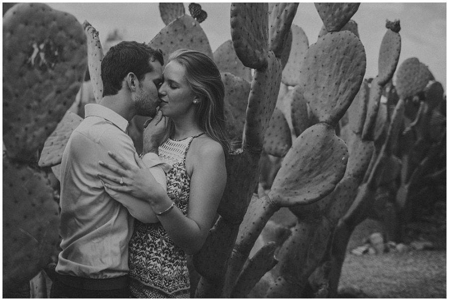 Ronel Kruger Cape Town Wedding and Lifestyle Photographer_8437.jpg