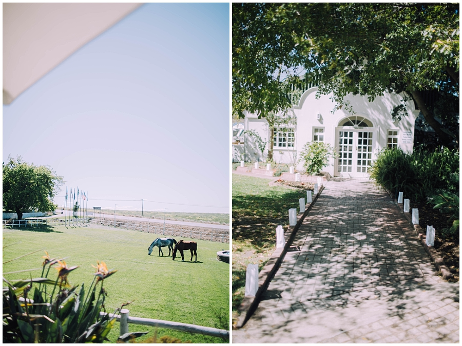 Ronel Kruger Cape Town Wedding and Lifestyle Photographer_8529.jpg