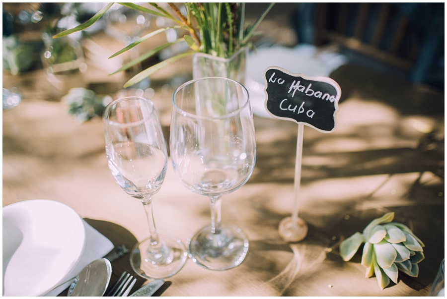 Ronel Kruger Cape Town Wedding and Lifestyle Photographer_0375.jpg