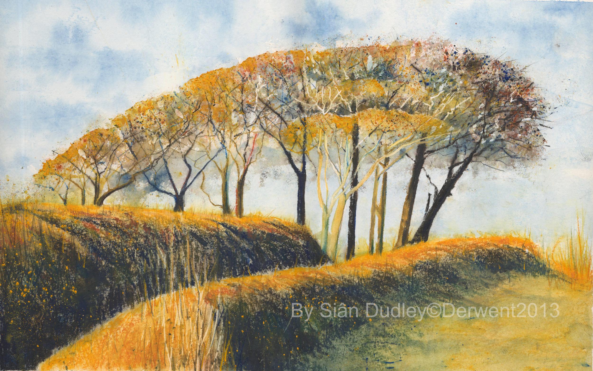 Loddiswell Trees   Derwent Inktense, commission by Derwent