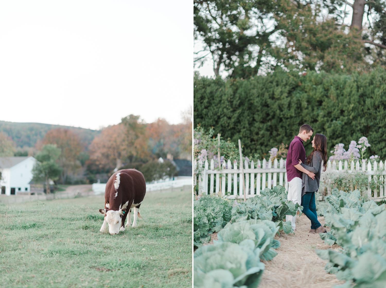charlottesville_engagement_ashlawn_highland_0041.jpg
