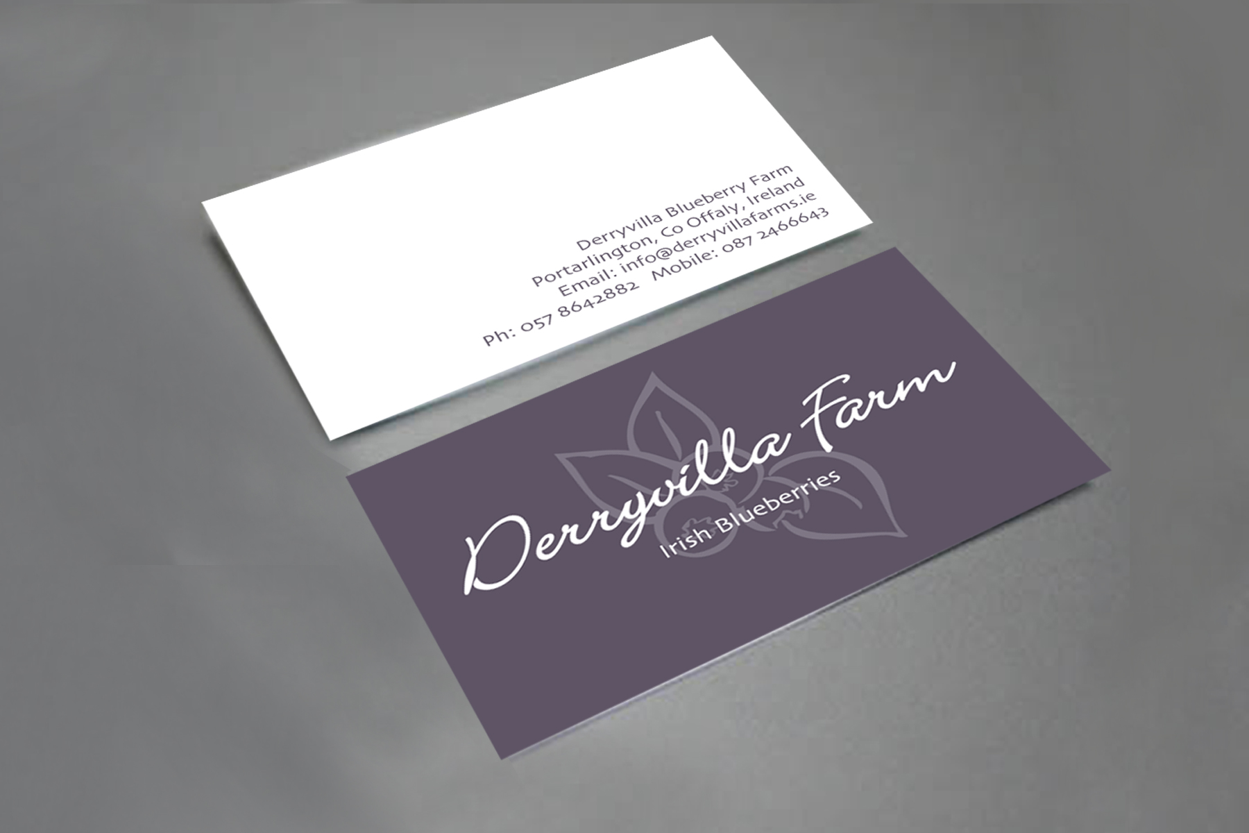 Derryvilla-Stationery-business-card.jpg