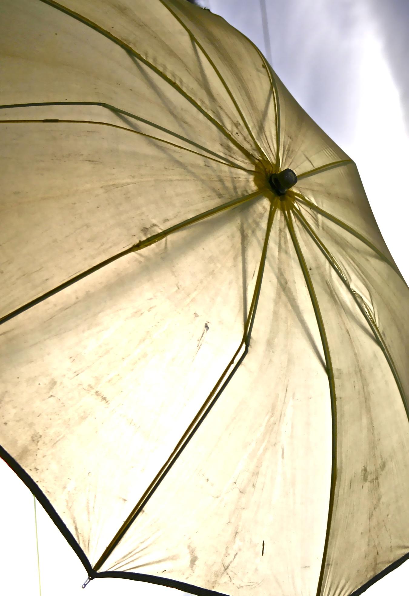 Umbrella and Hall Girls 034.jpg