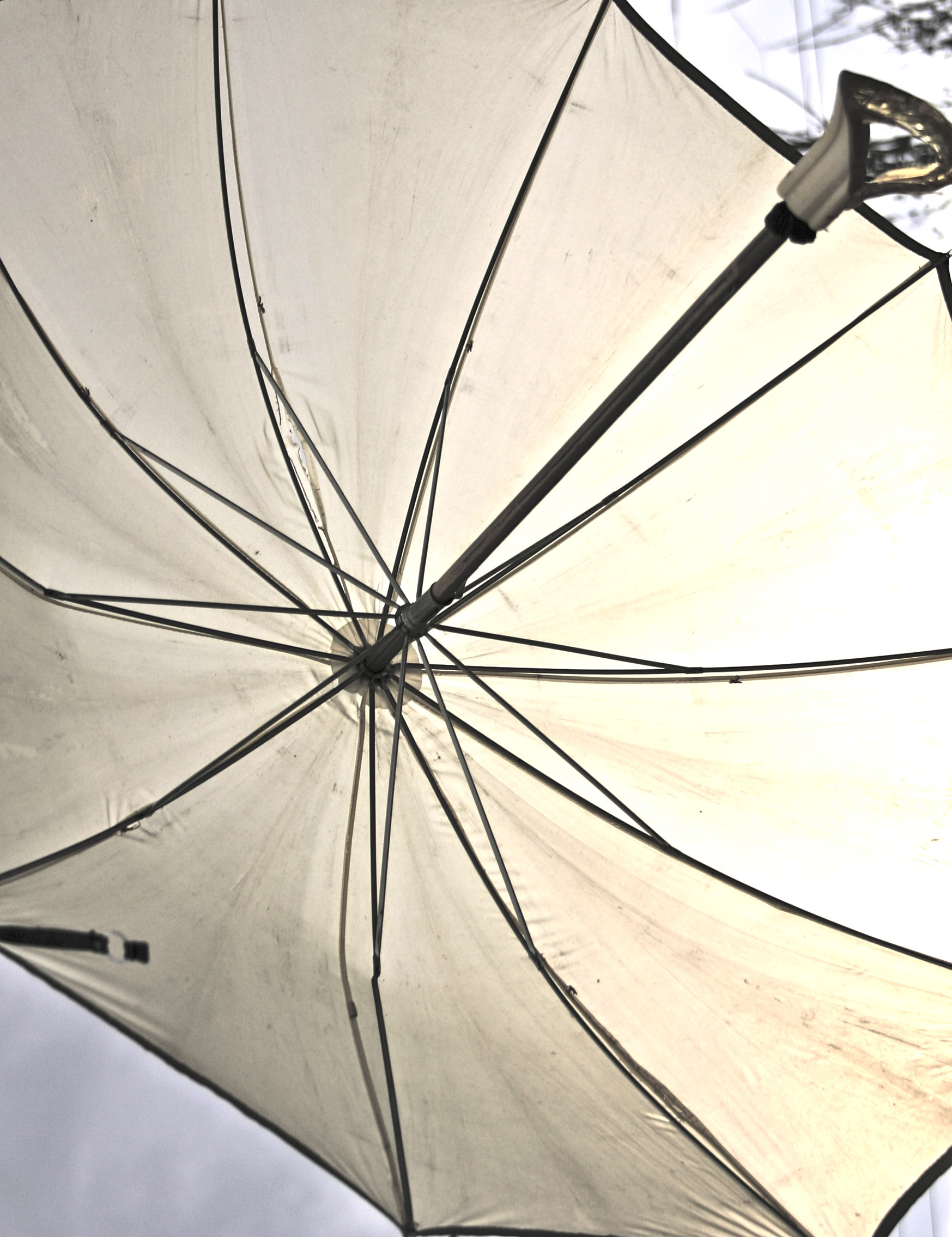 Umbrella and Hall Girls 038.jpg