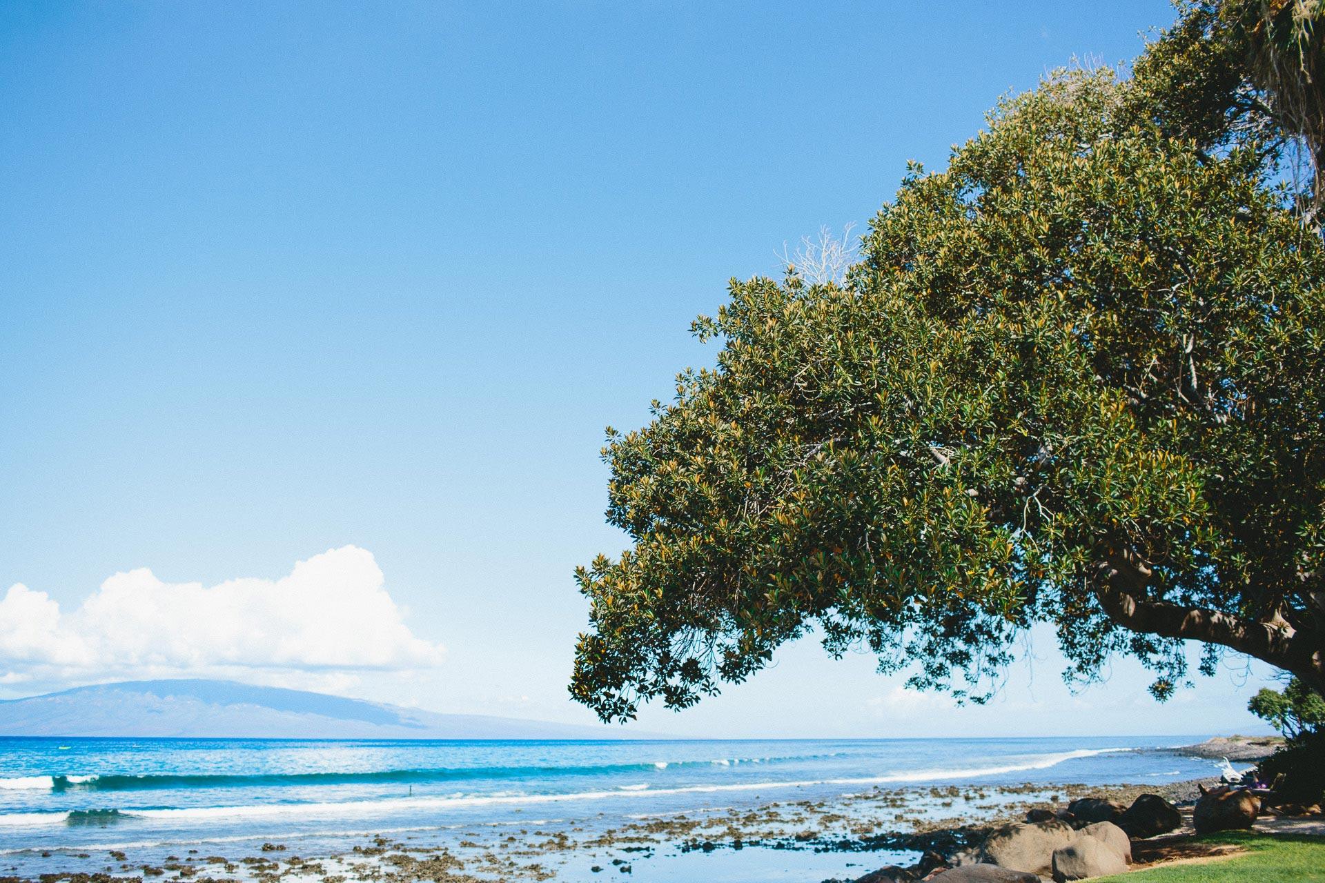 KW-Maui-Hawaii-Wedding-002@2x.jpg