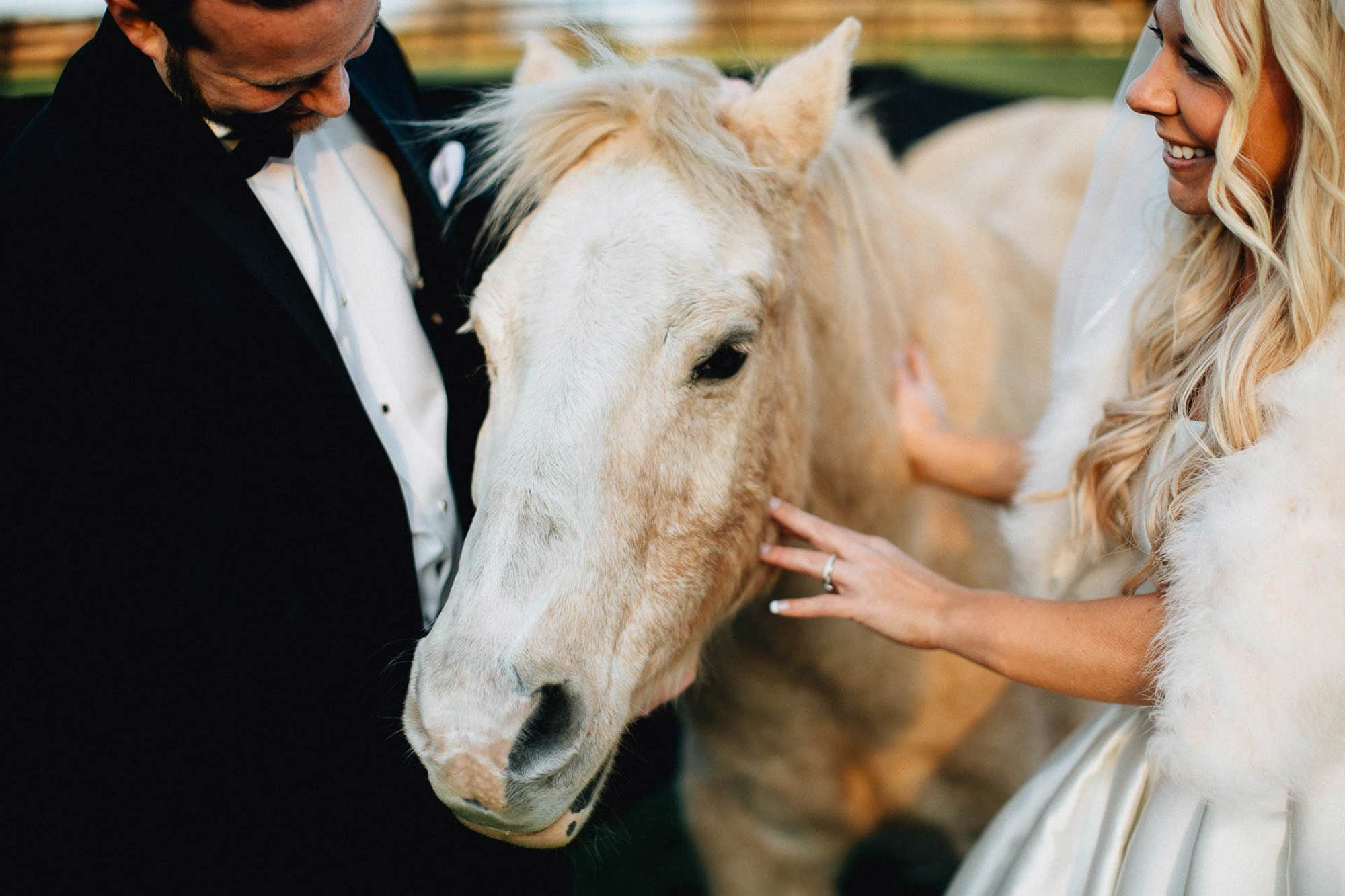 Horses and Brides - Canopy Creek Wedding Photography