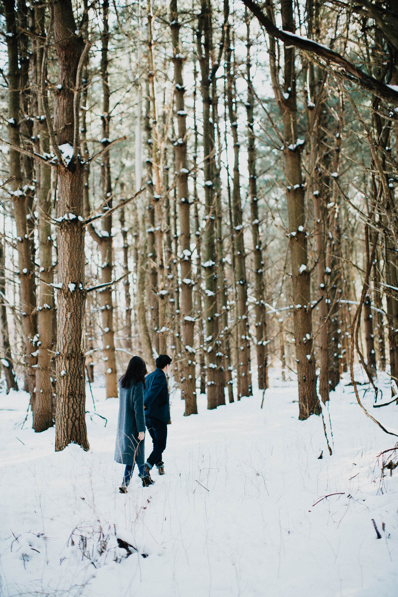 Joy-David-Walnut-Woods-Metropark-Engagement-Columbus-Ohio-010.jpg