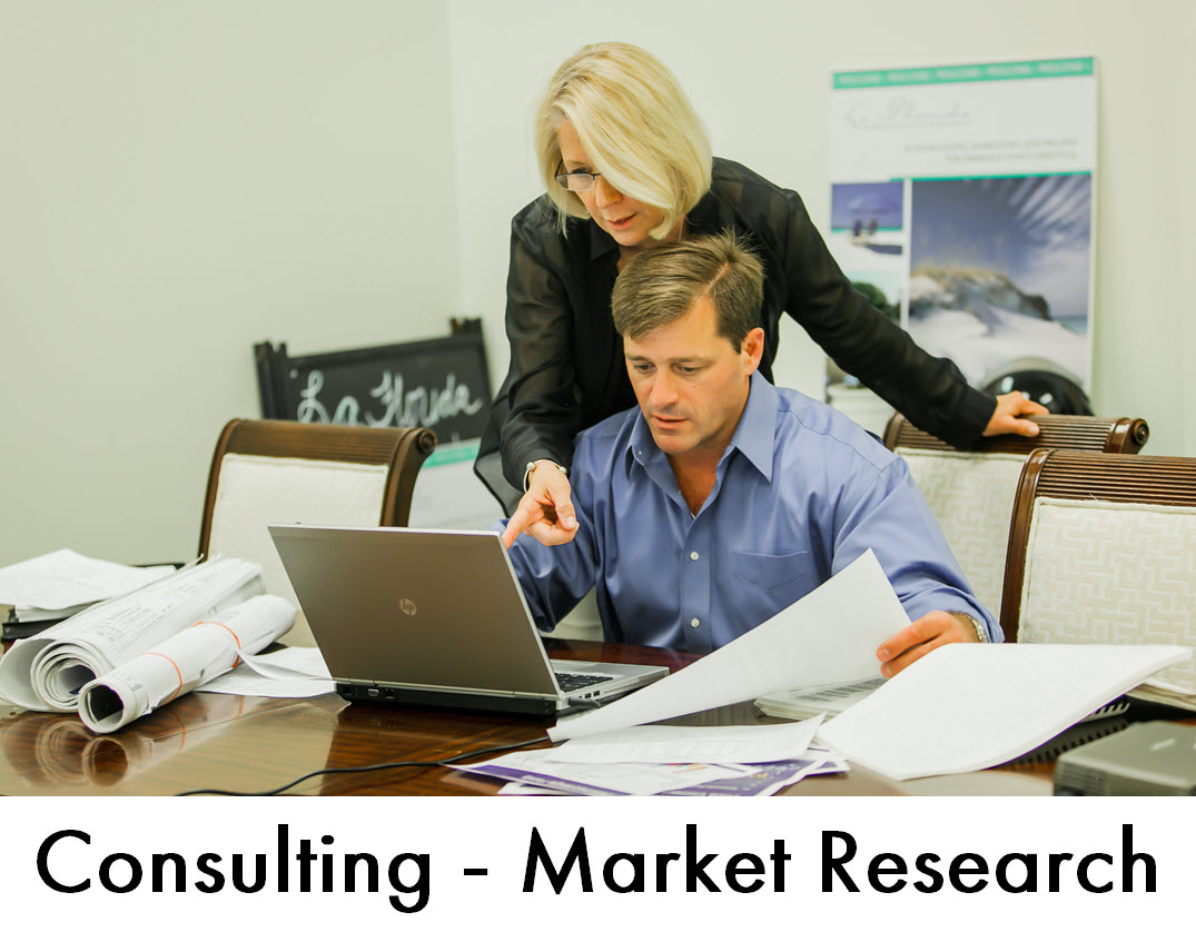 Consulting  - Market Research
