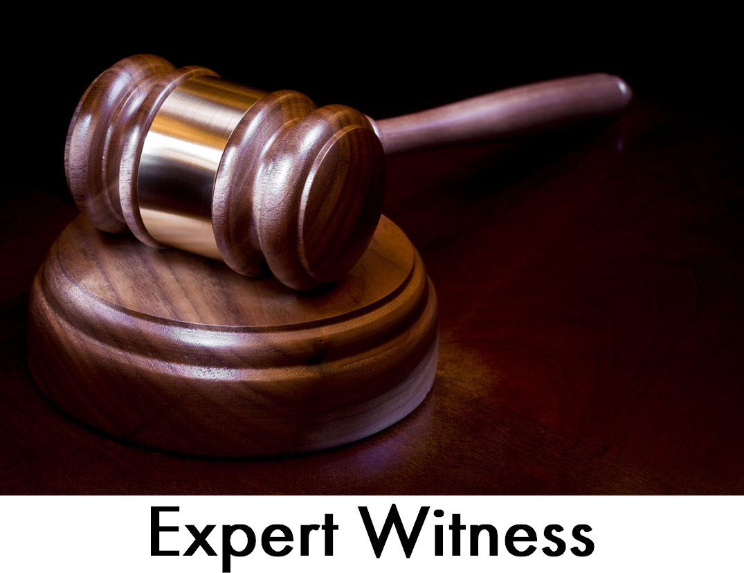La Florida Expert Witness