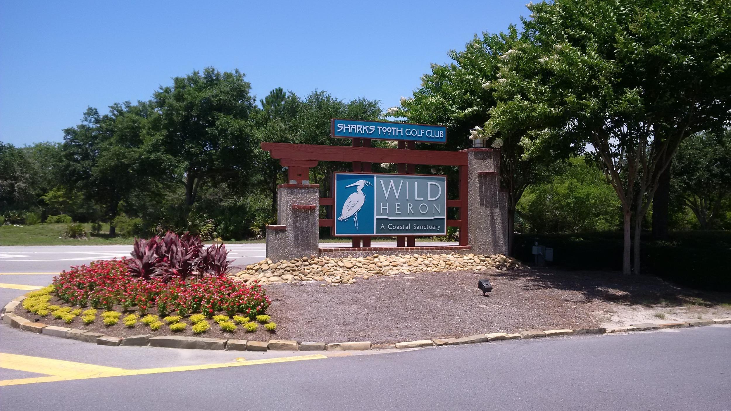Wild_Heron_Sharks_Tooth.jpg