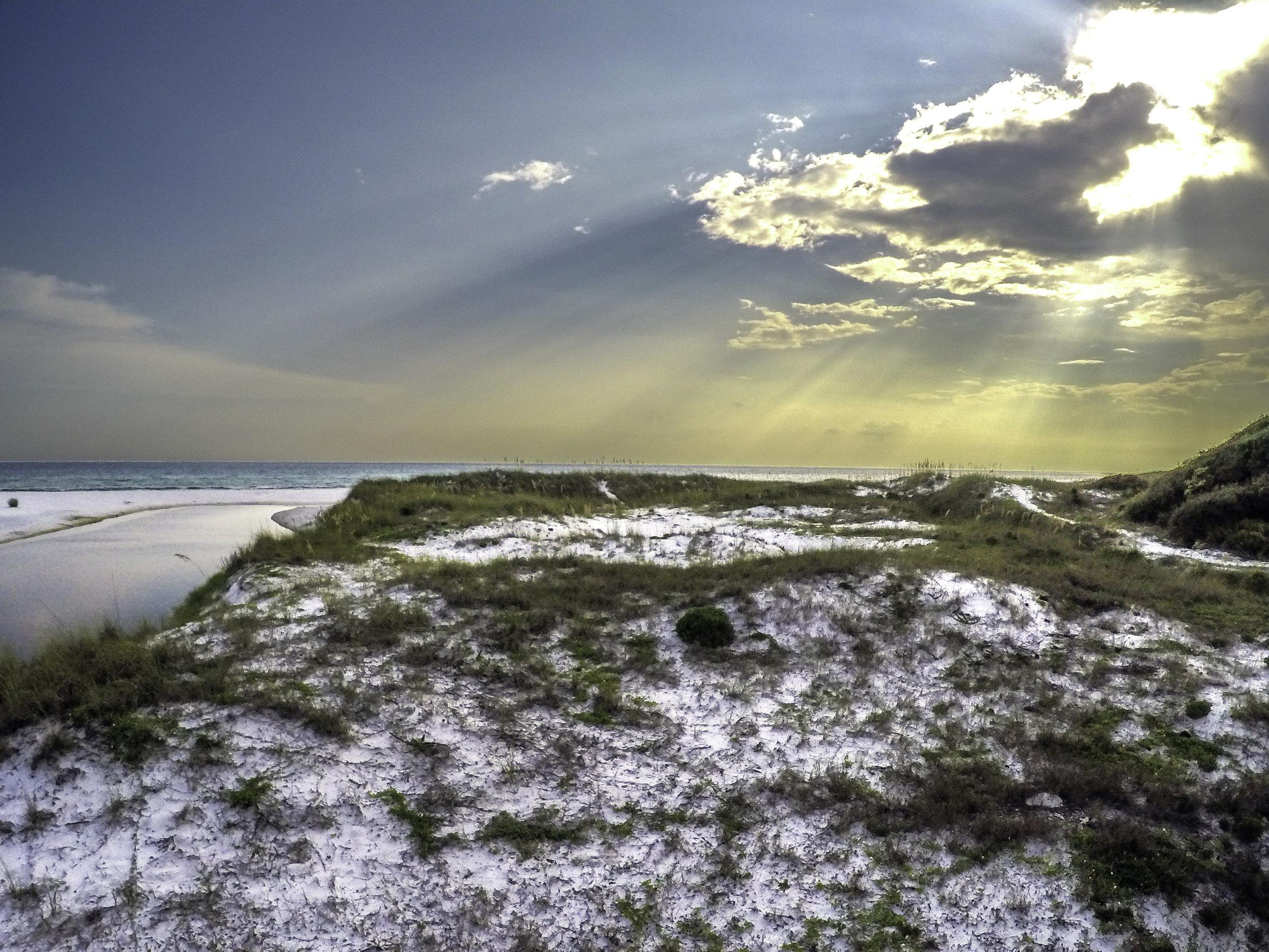 Bannerman_Beach_Dunes.jpg