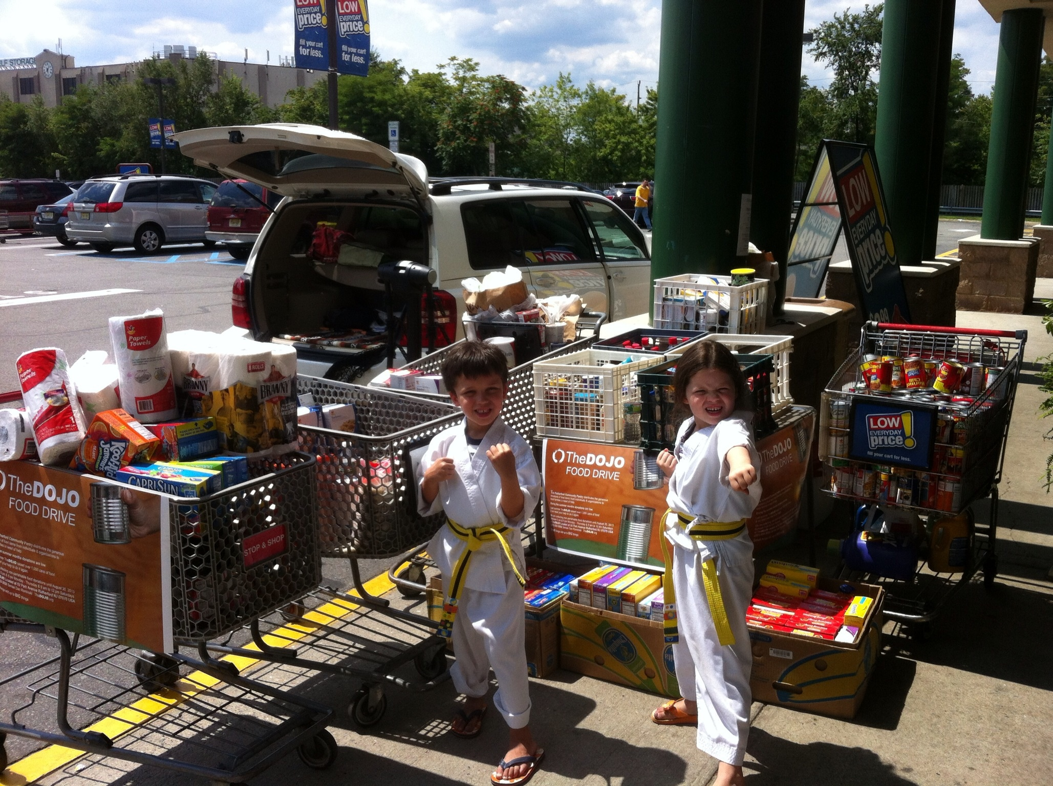 5 Year Old Twins Raise over 1,000 Items for Food Pantry