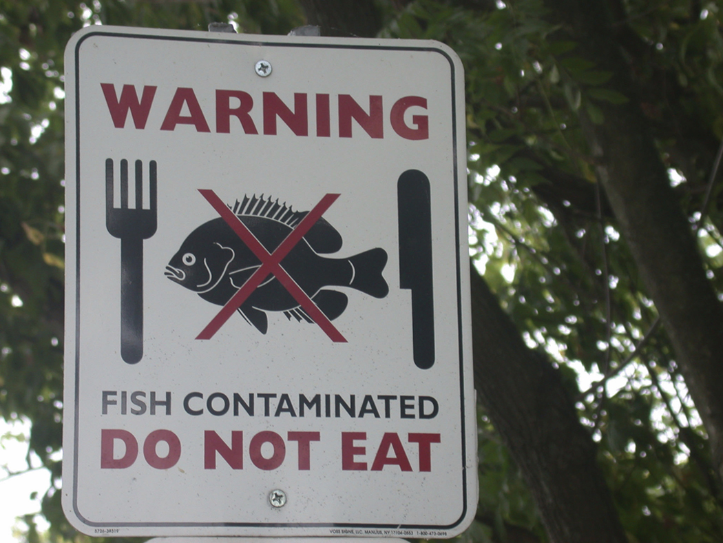 Fish consumption advisories caused by local pollution sources.