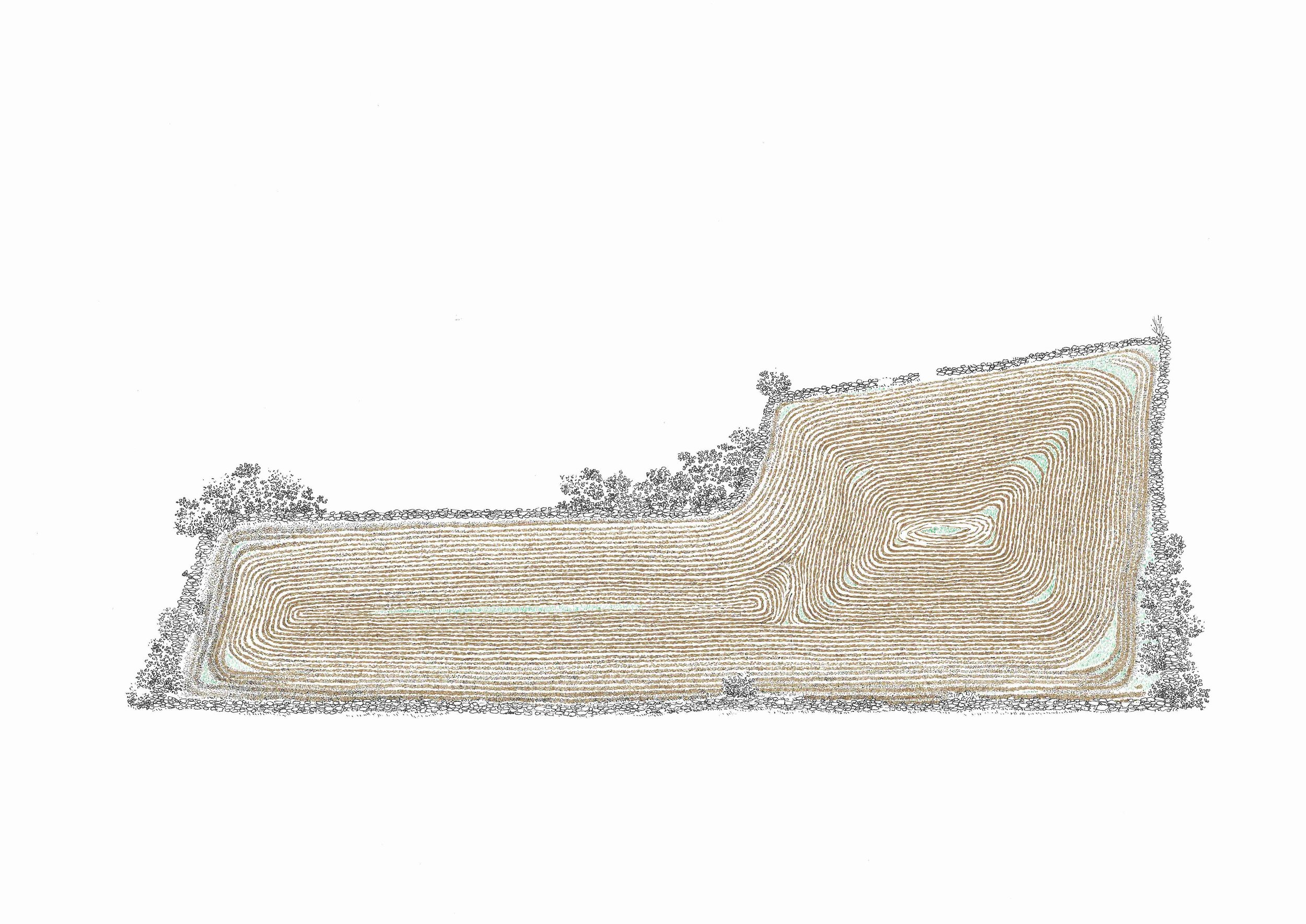 04. Field series, pen on fabriano, 29.7cm x 42cm, 2017 copy.jpg