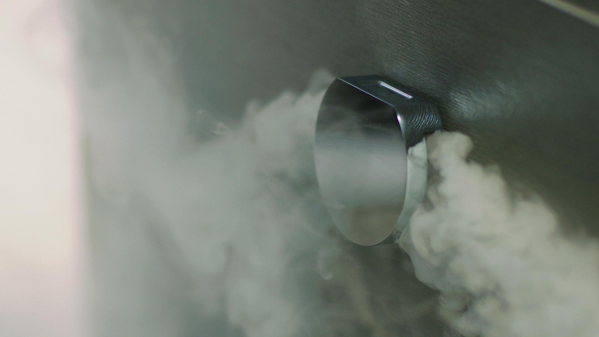 Steamhead mr Steam.jpg