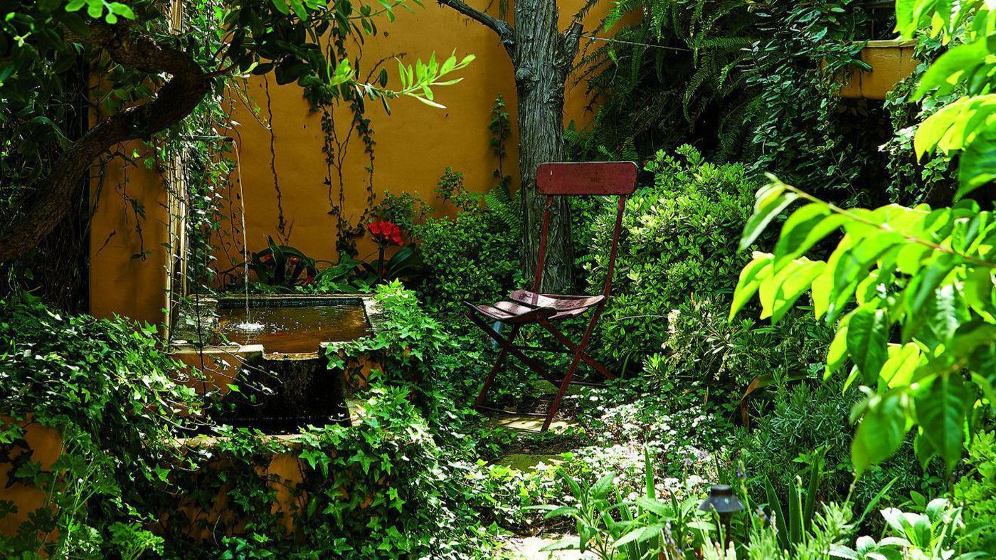 A glimpse into Nancy Goslee Power's garden, which serves as inspiration for her several projects throughout Los Angeles and the world. (Dominique Vorillon)
