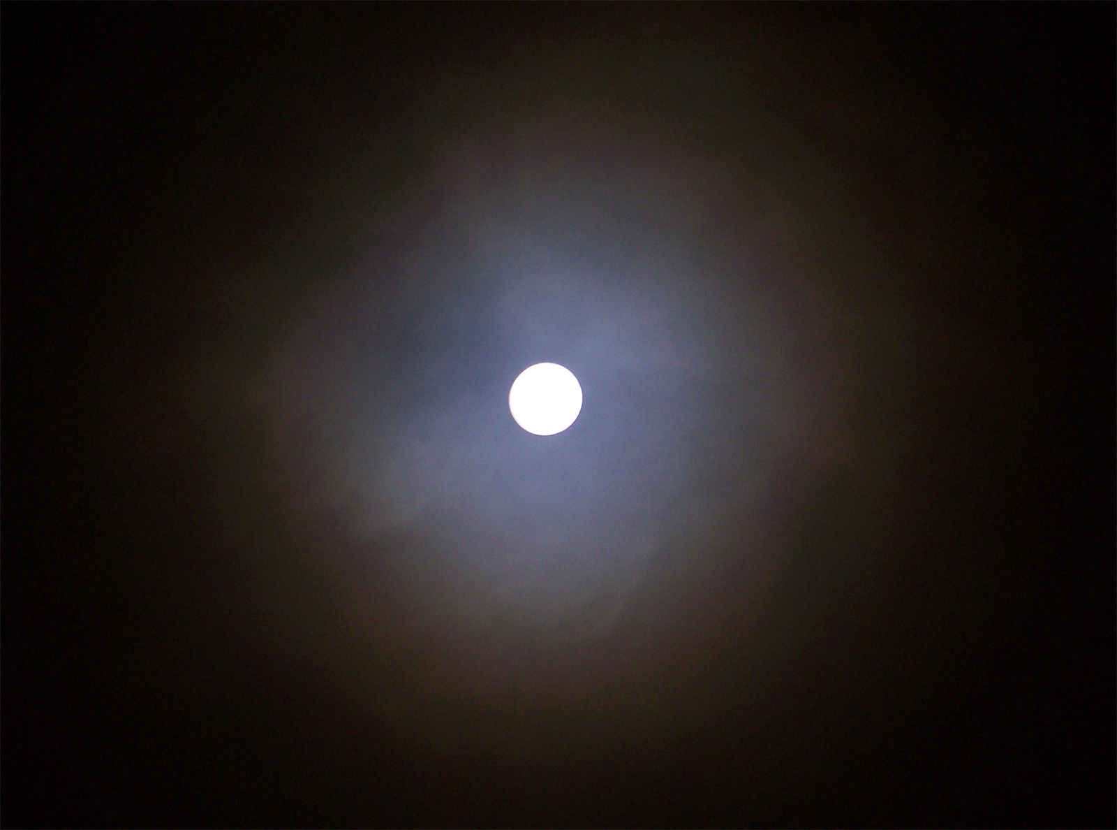 moon promo_sized.jpg