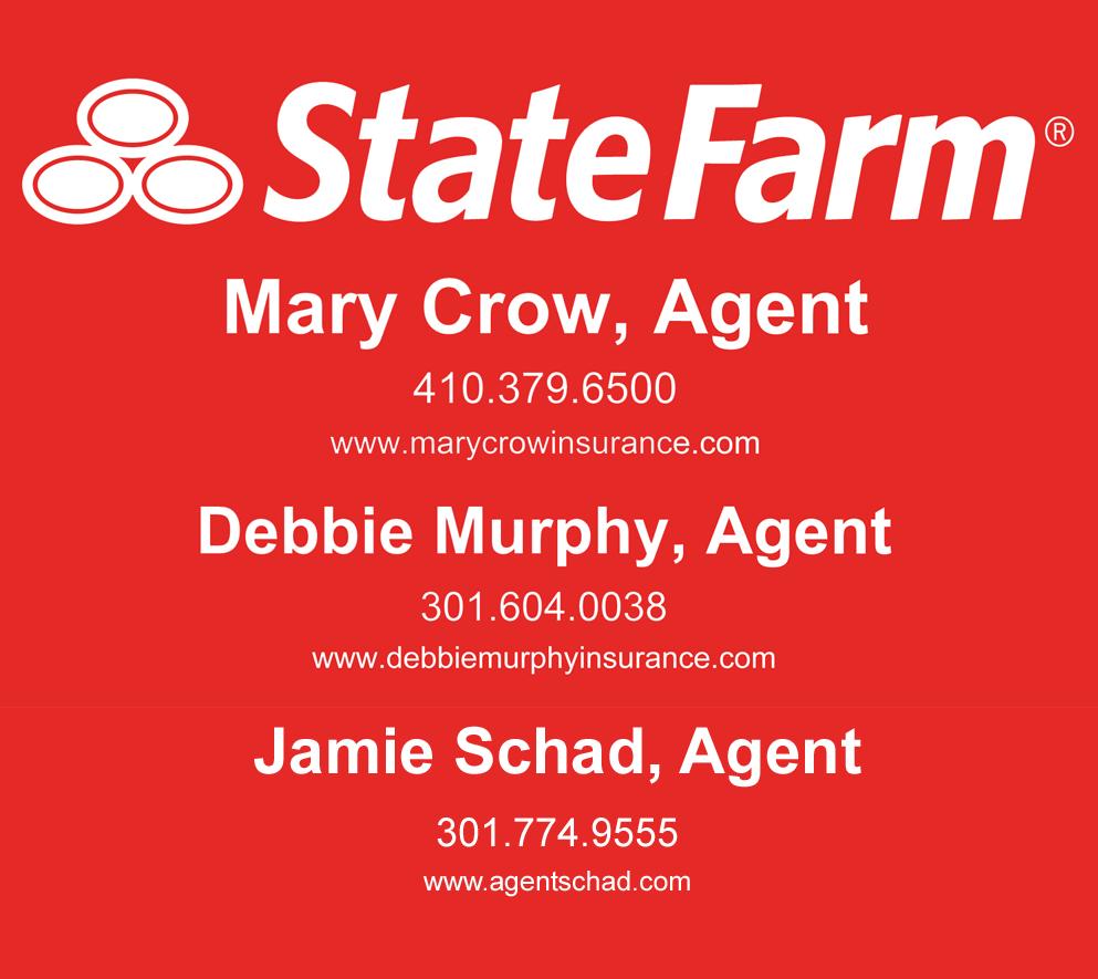 state farm 3 copy.jpg