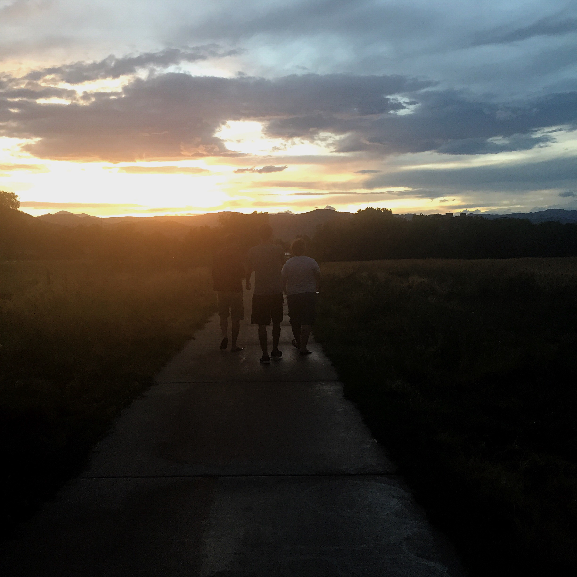 Dramatically walking off into the sunset to catch Pokemon.