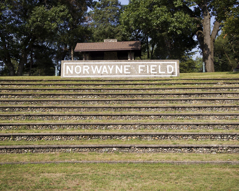 NorwayneField.jpg