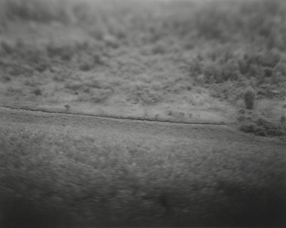 landscape_web_12.jpg