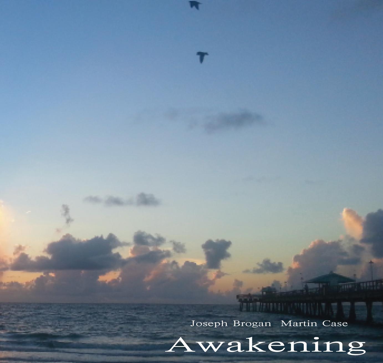 Awakening 2013