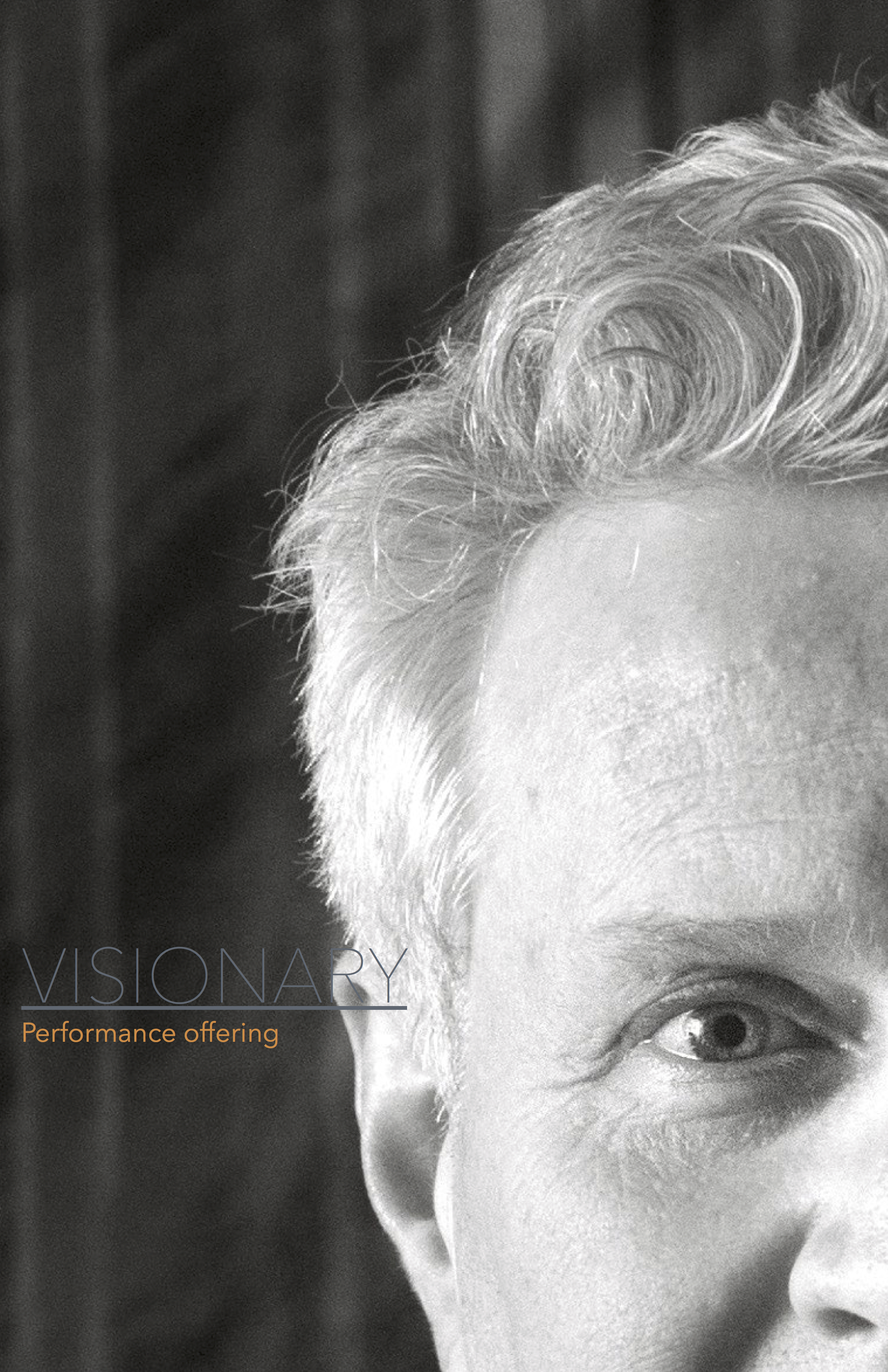 Introducing Visionary jpg.jpg
