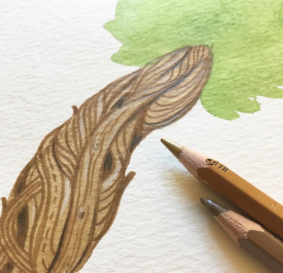 Anne Quadflieg Illustration Watercolour Tree Kopfweide.jpg