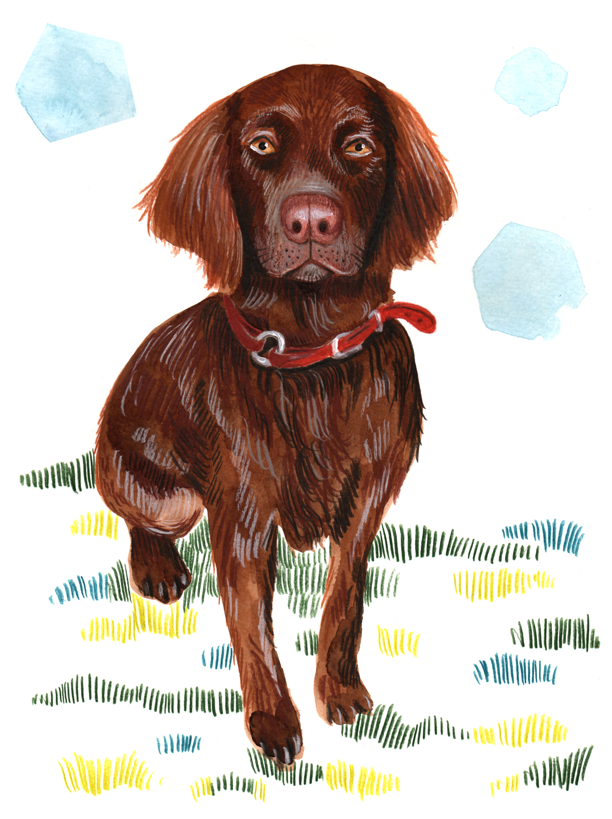 AnneQuadflieg_Jagdhund_2_Aquarelle_Illustration_small.jpg