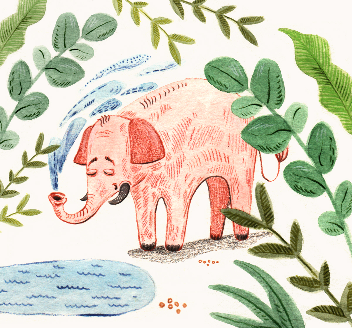 AQ_Elephant.jpg