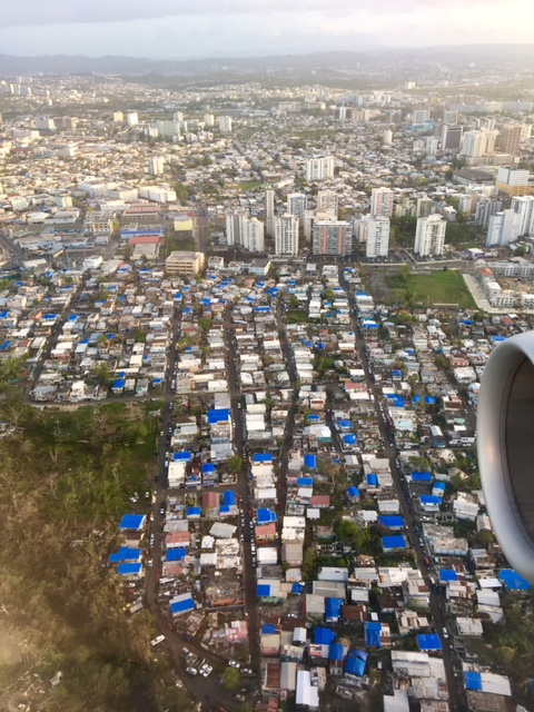 Blue tarps over homes damaged by Hurricane Maria