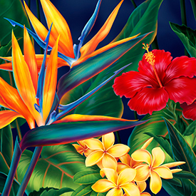 Jeff Fillbach's  Tropical Paradise