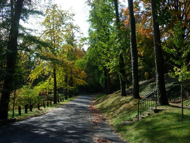Pentwater Road in the fall