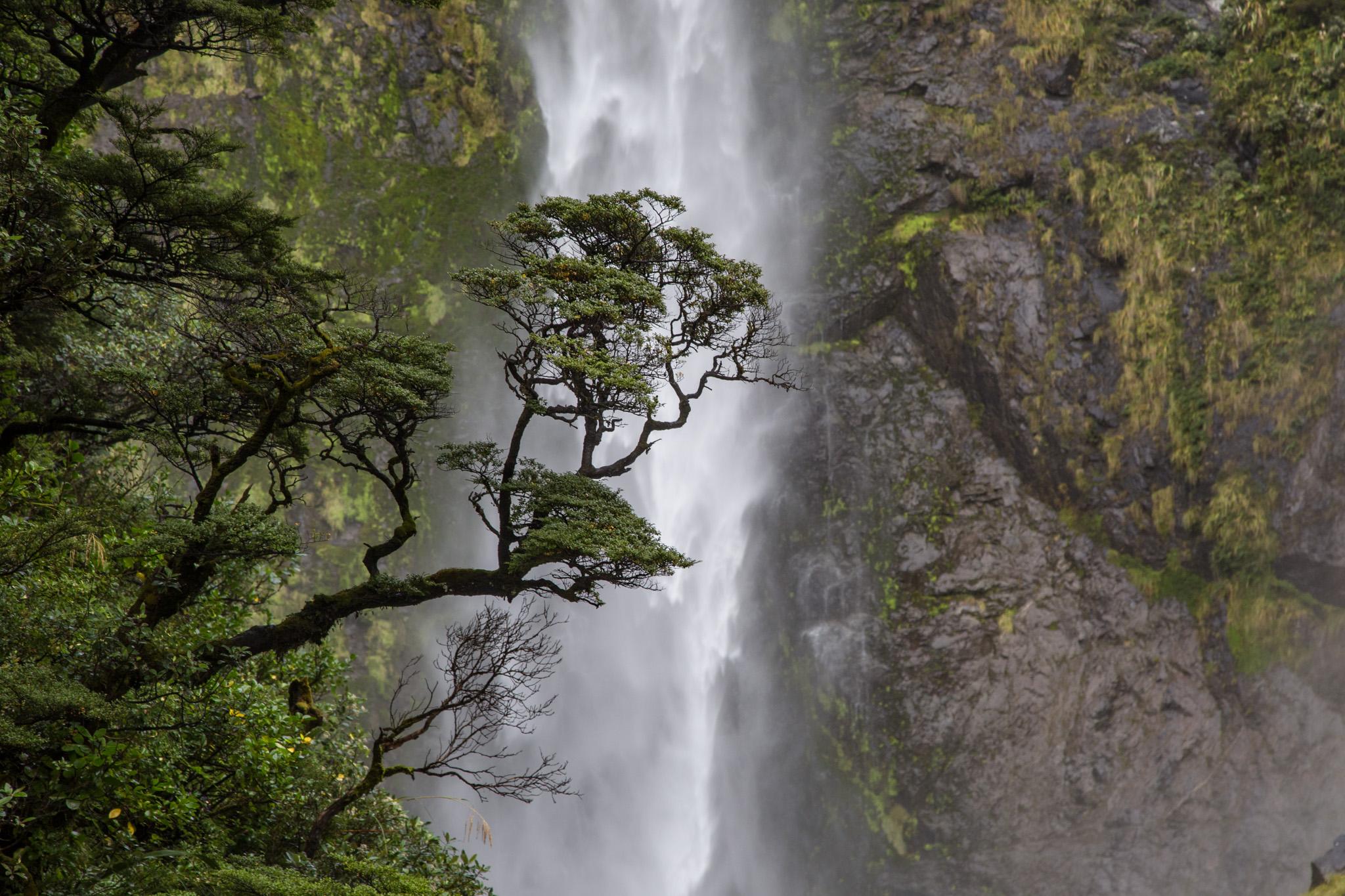Devil's Punchbowl Falls, Arthur's Pass