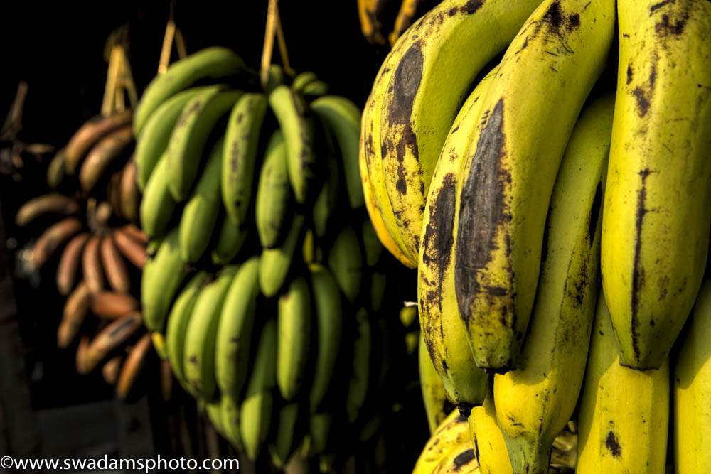 Burma produces a wide range of bananas in various textures, flavors, shapes and many shades of red, green and yellow