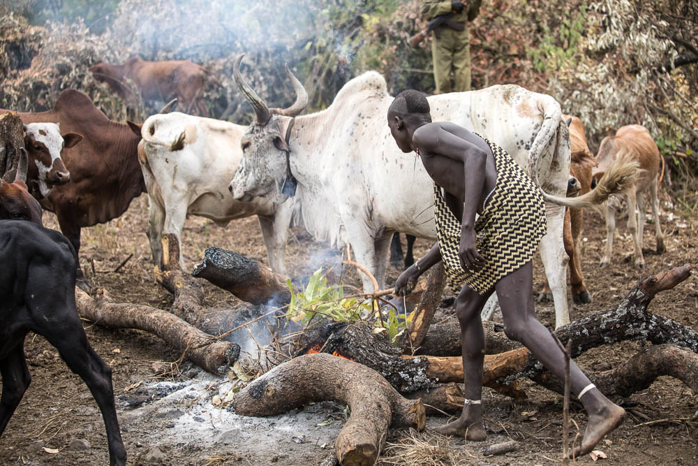 A young Suri man prepares a fire with green brush to generate smoke and control the flies and mosquios.