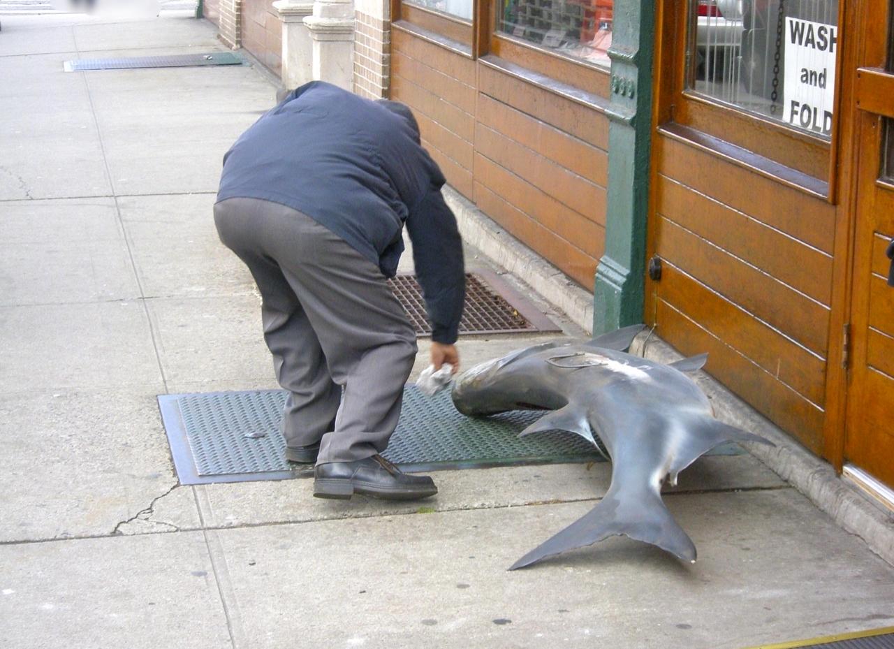 Cleaning a fish, Brooklyn, NY