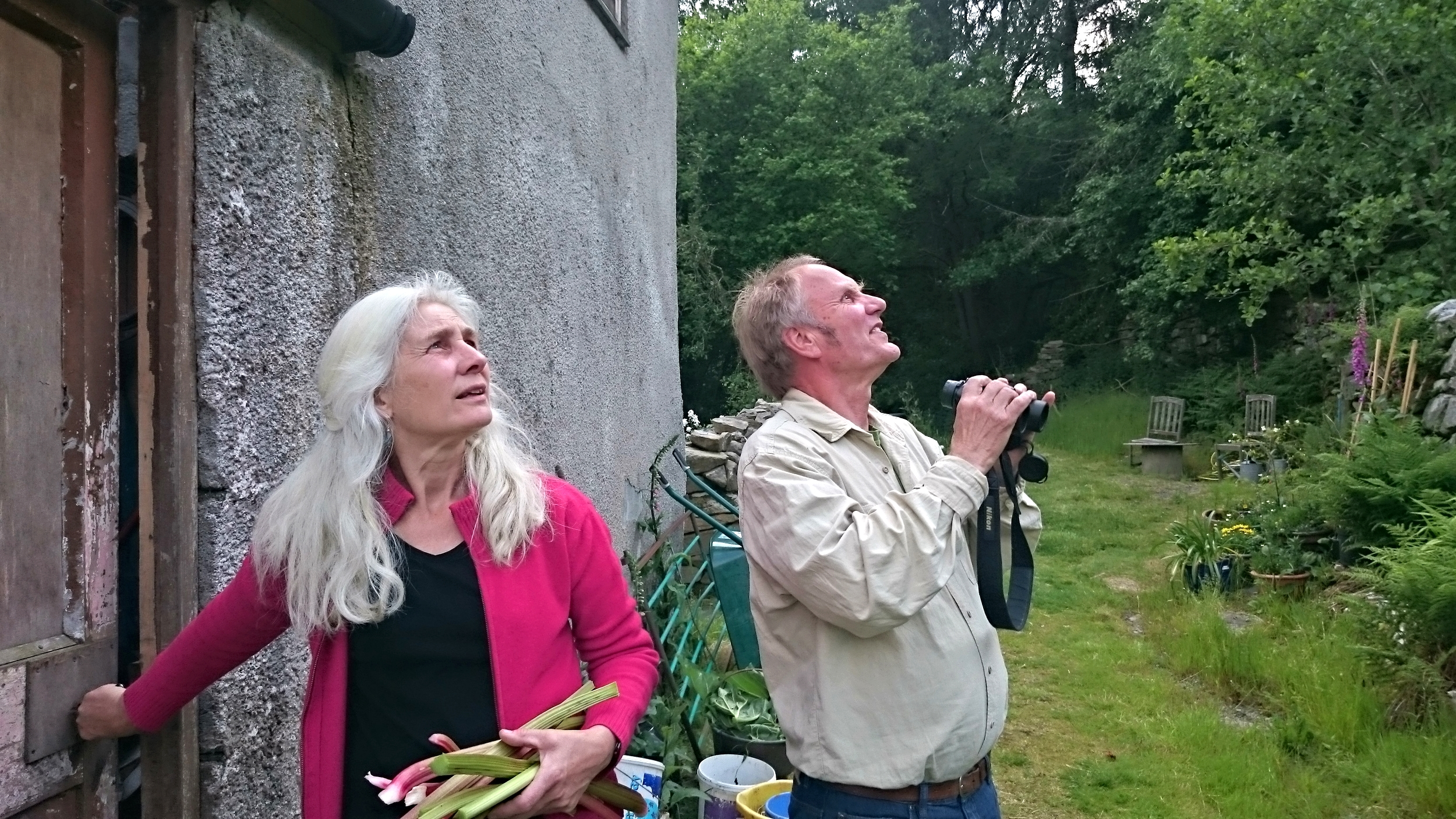Birdwatchers (Wales)
