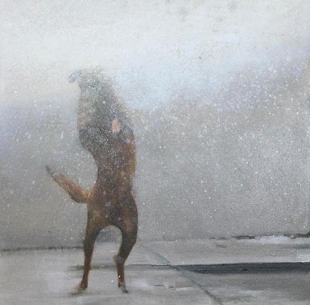 """""""Mata paco 2"""" 50 x 50 cms - 2013"""