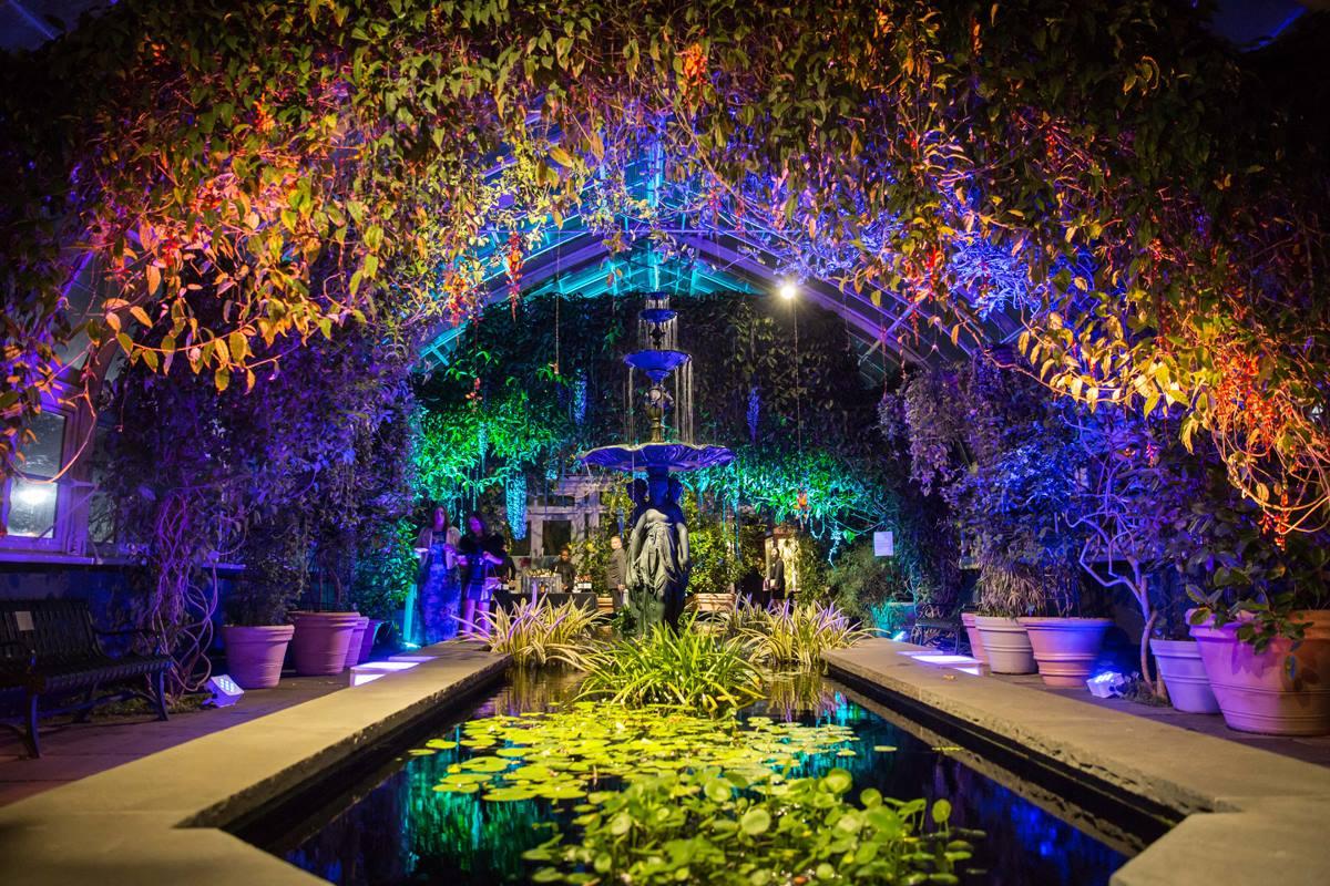 NEW YORK BOTANICAL GARDEN ORCHID EVENINGS