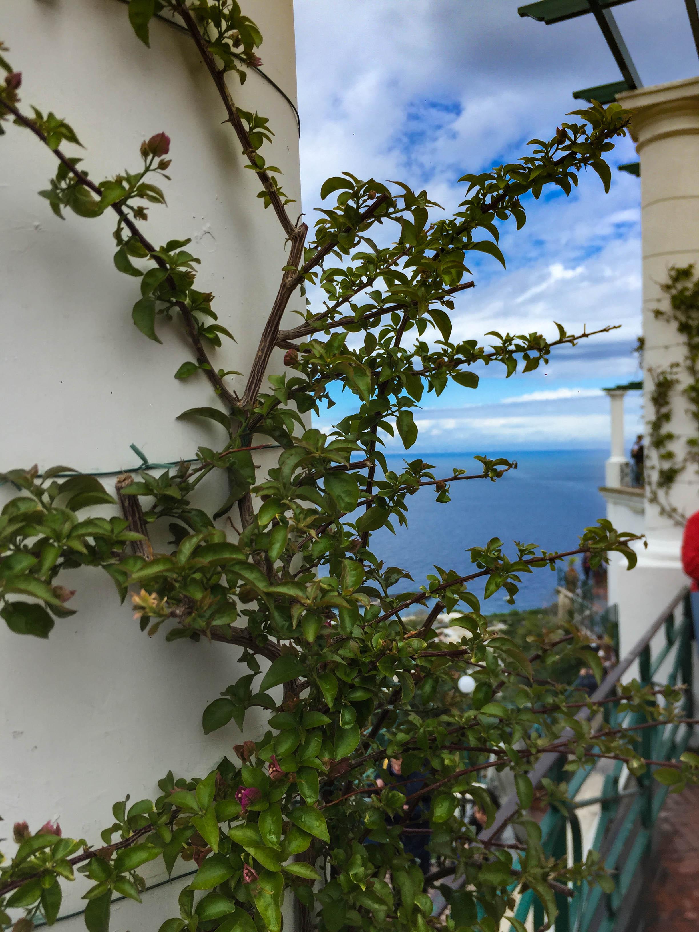 Italy 315.jpg