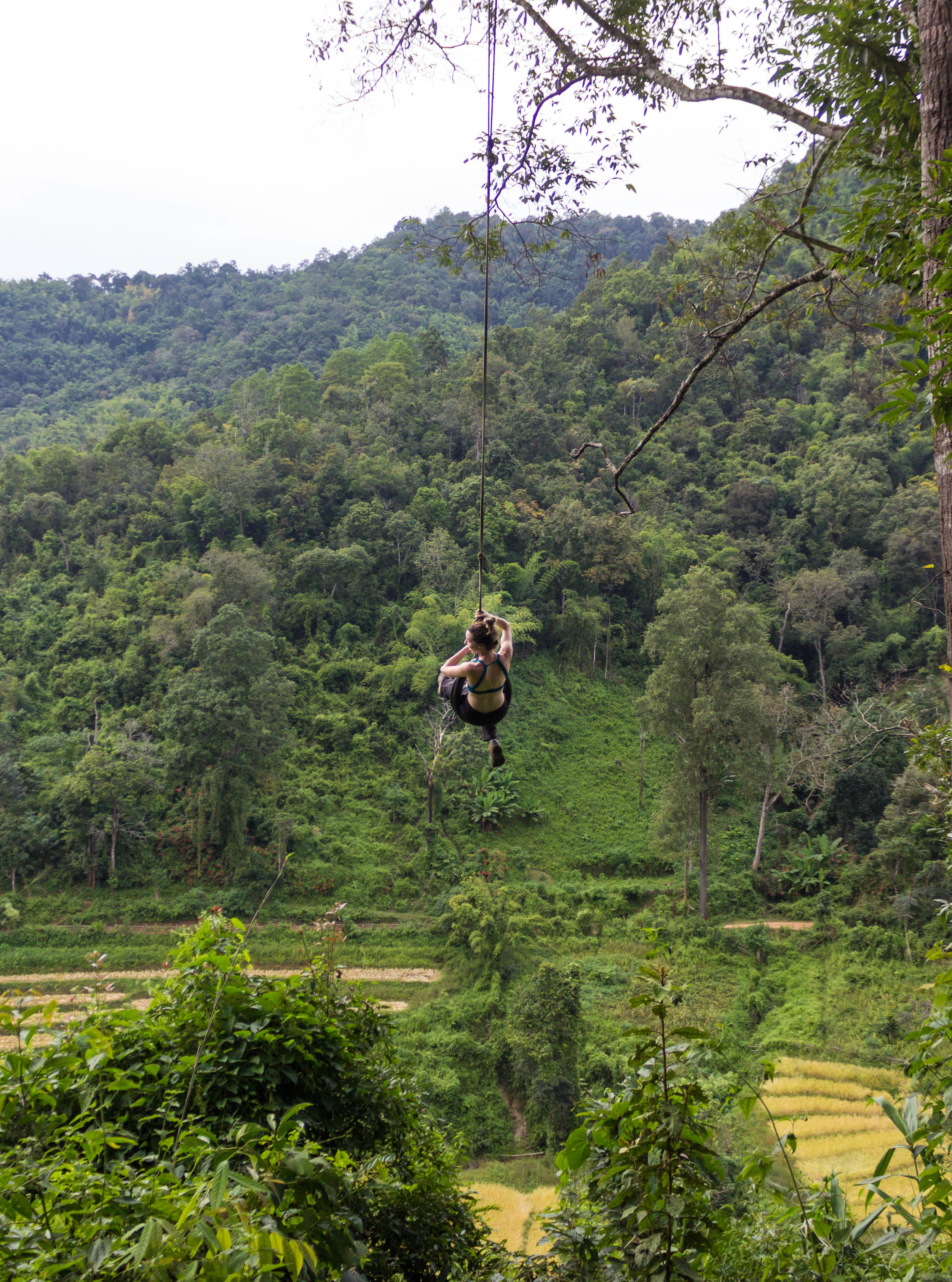 A tire swing hung from a tree that overlooks a small village among rice fields