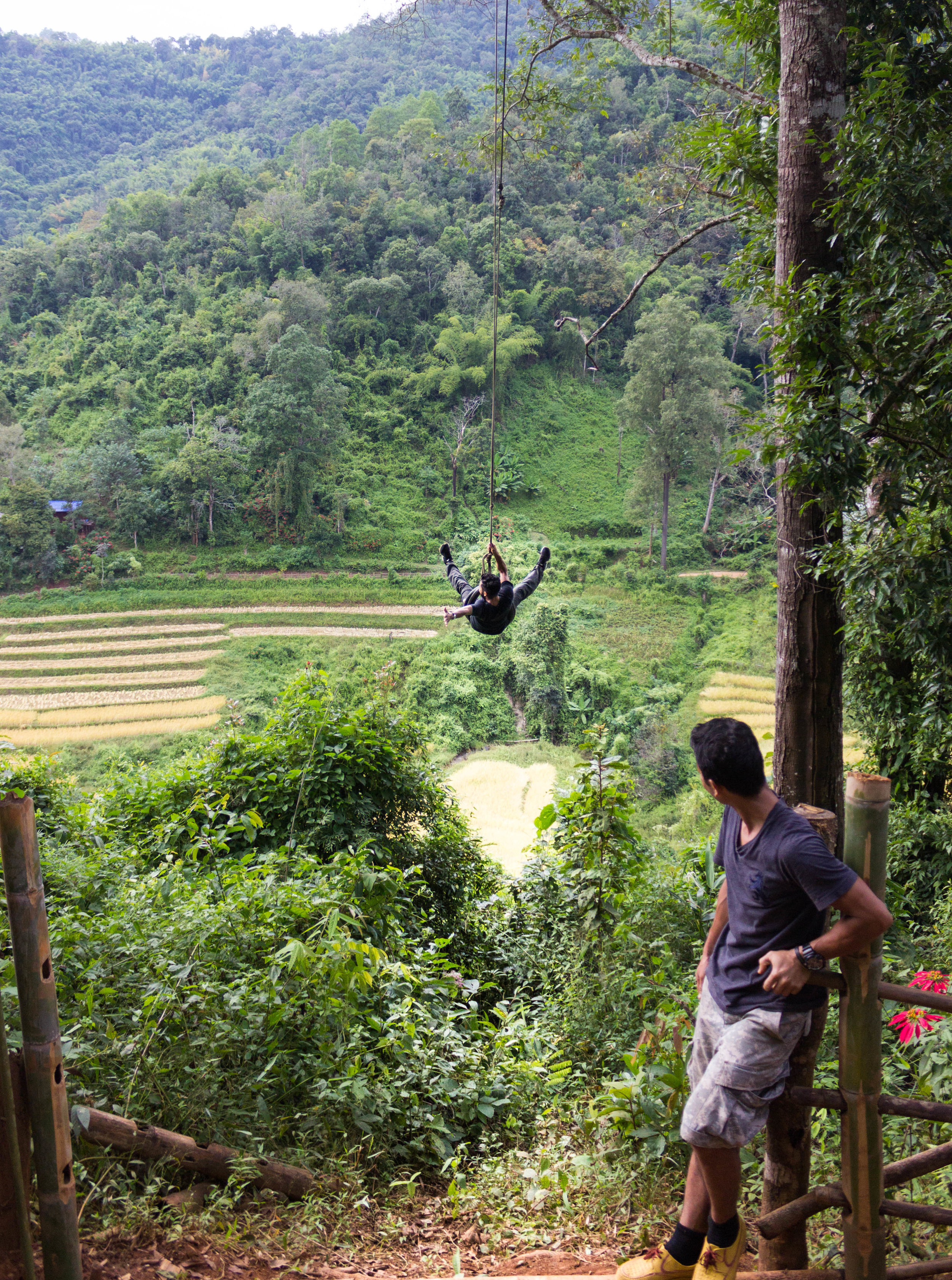 A tire swing above the village's rice fields