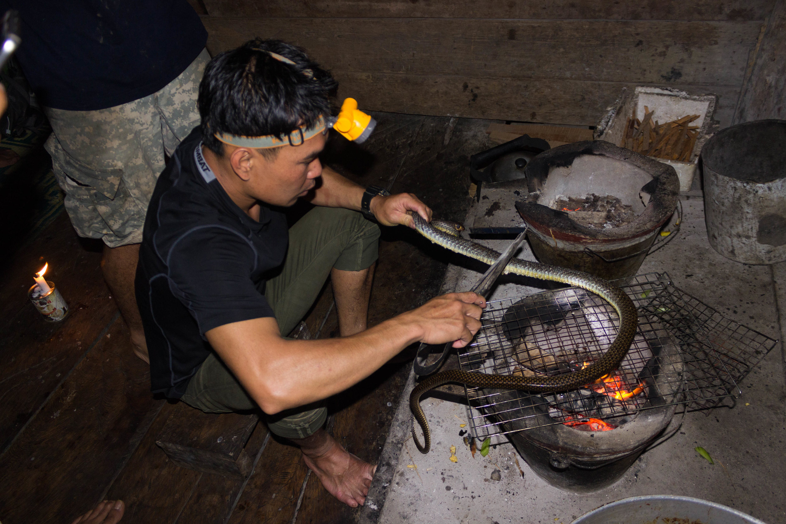 Cooking the snake